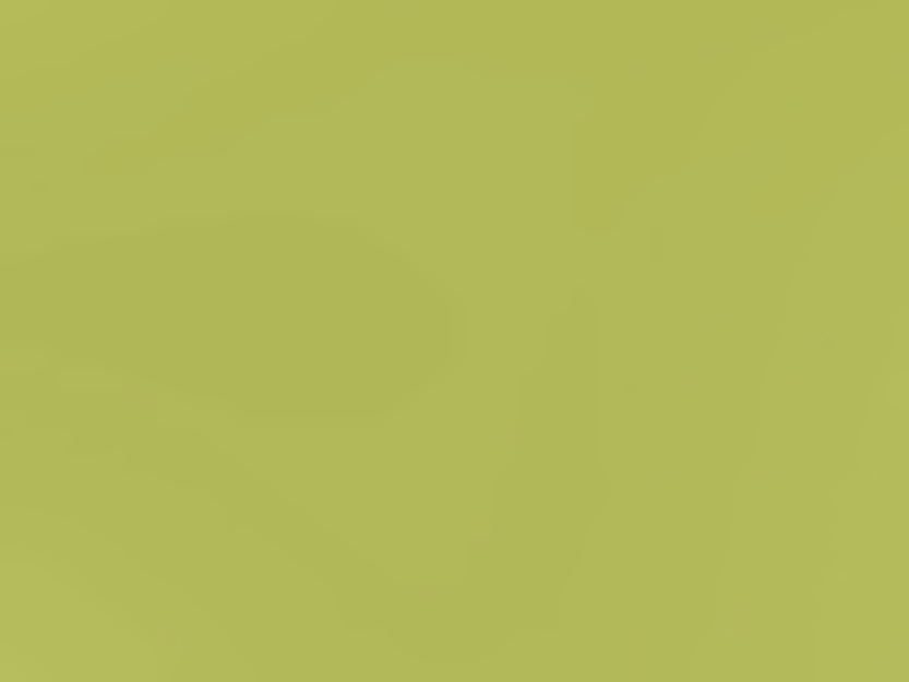 Accent Painted Selection LMG Limegreen