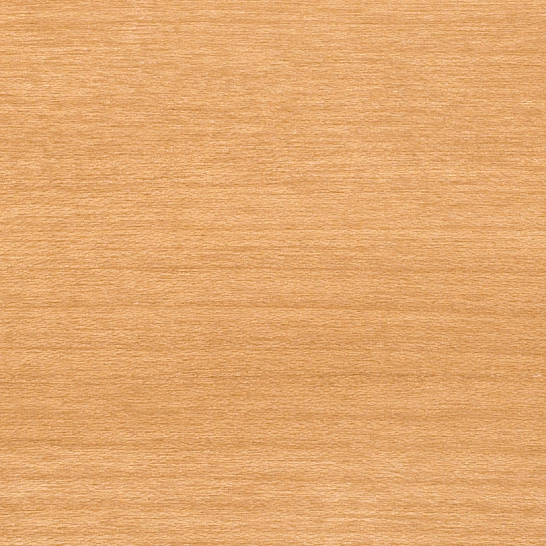 Wood Veneer SMW Honey Maple