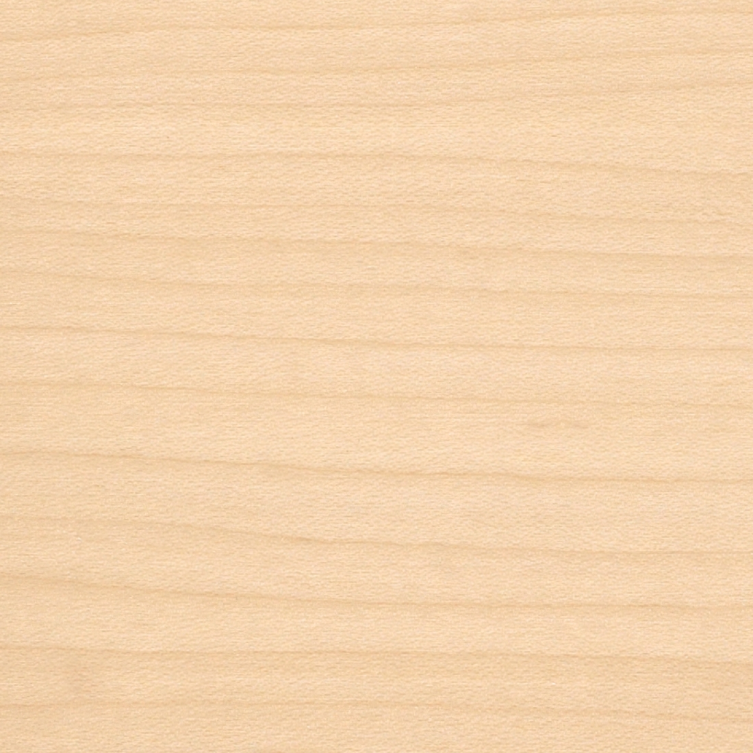 Wood Veneer WMW White Maple